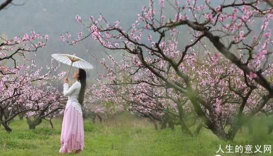 【人生的意义网专题】90后女孩隐居深山,过心灵家园的生活