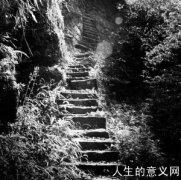爱情天梯——现实世界里的绝美爱情故事