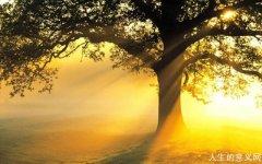 周国平:人生哲学讨论什么问题
