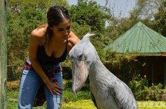 美女模特辞职去非洲拯救濒危野生动物