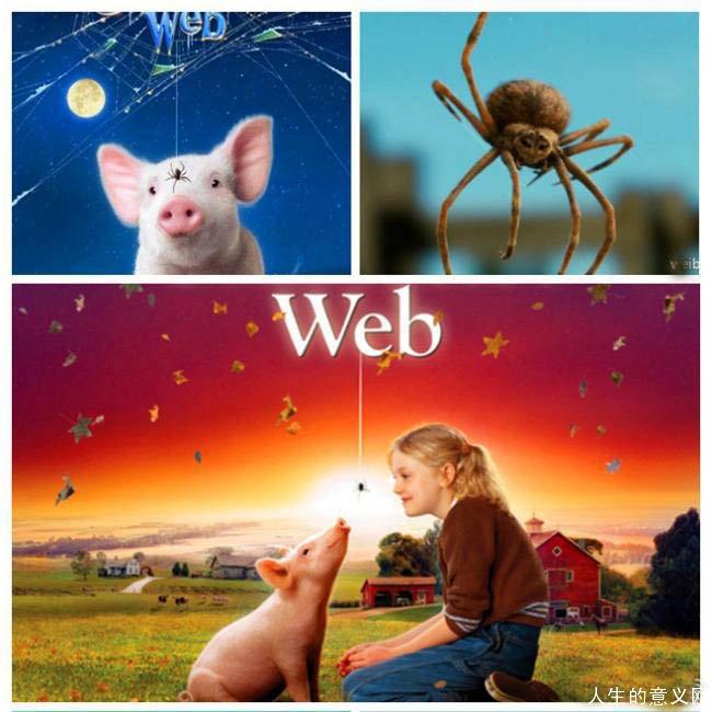 生命的意义在于什么?《夏洛的网》告诉你!