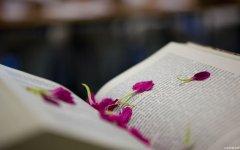 《人生的意义在于承担》阅读答案
