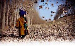 秋天是高贵灵魂的季节