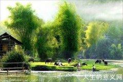 我一生最爱的是秋天、清风、河水、故乡