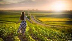 感悟人生的经典句子|大多数人过着一种平静的绝望生活