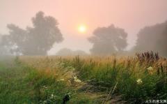 生活感悟经典句子|每一个早晨都是一个愉快的邀请