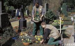 人生感悟|德国的墓地像花园