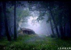 诗意栖居 林中小屋