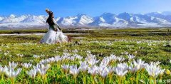 这里是那拉提草原,不是天堂