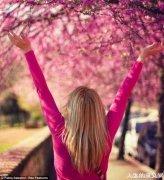 把床放在一棵开满鲜花的树下