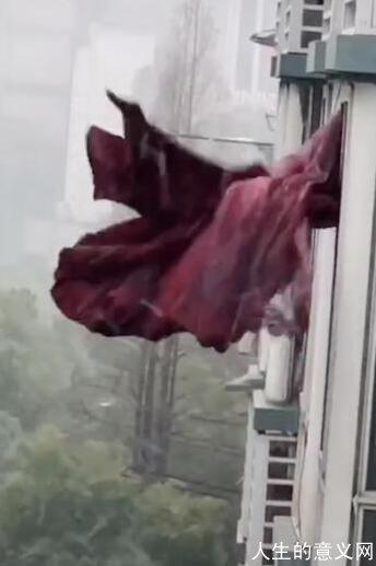 被千万网友围观 武汉这条悲伤的窗帘 被博物馆收藏