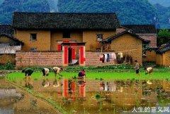 诗意栖居的农耕文明:插秧、收谷、晒谷