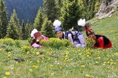 山坡上开遍野花