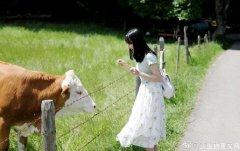 动物感受到的疼痛有人类强烈吗?高等脊椎动物对疼痛的感受和人类一样